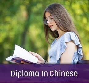 Dip_Chinese